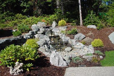 Read more: Pondless Waterfalls